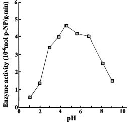 effects of glucose 6 phosphate g6p on the kinetics of the enzyme alkaline phosphatase Glucose 6-phosphatase and kinetic properties with respect to g6p the hydrolysis of d-glucose 6-phosphate to d-glucose it is a key enzyme in.